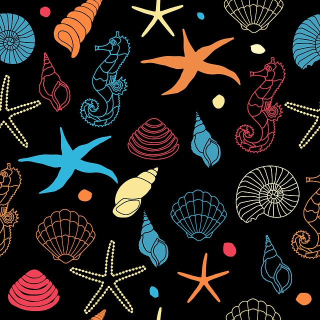 Seahorse, Starfish, Seashell, Shell, Sea Shell, Art
