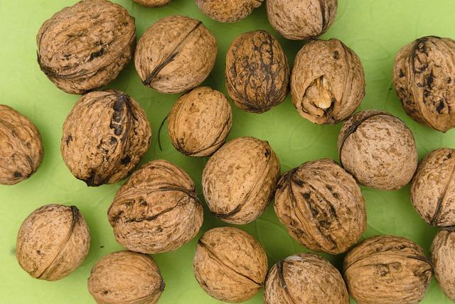 Walnut, Shell, Eat, Nature, Meal, Ingredient, Bio