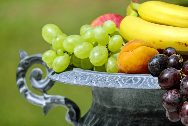 Fruit Bowl, Shell, Fruit, Fruits, Fruity, Vitamins