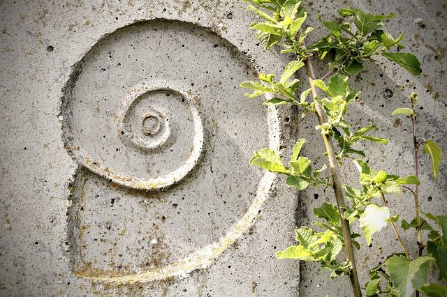 Snail, Relief, Texture, Wall, Shell, Stone, Spiral