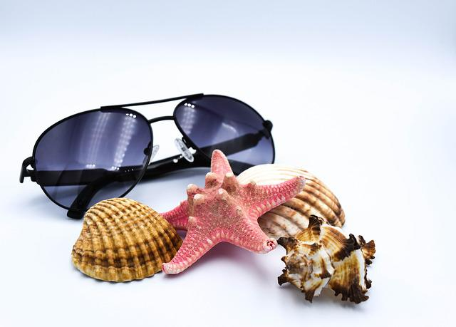 Sunglasses, Seashell, Summer, Glasses, Shells, Starfish