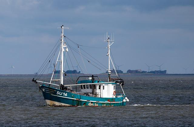Sea, Waters, Boot, Port, Ship, Coast, Sail, Fishing