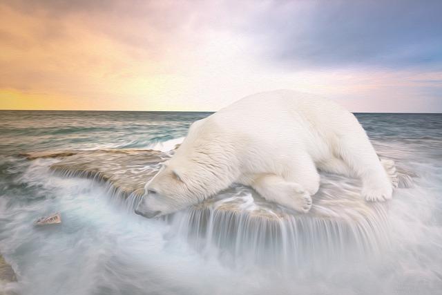 Polar Bear, Ship, Waterfall, Waters, Sea, Nature, Coast