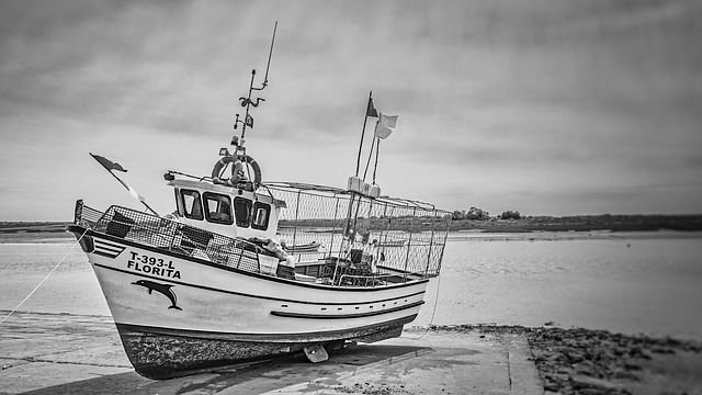 Ship, Boat, Fisher, Vessel, Monochrome, Fisherman