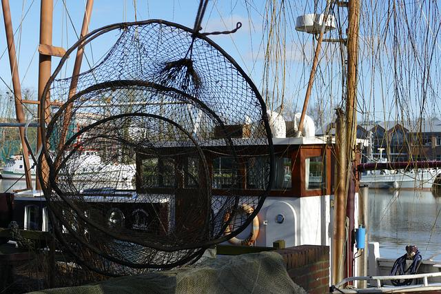Just, Fish, Fisheries, Boat, Ship, Port, Cabin, Water