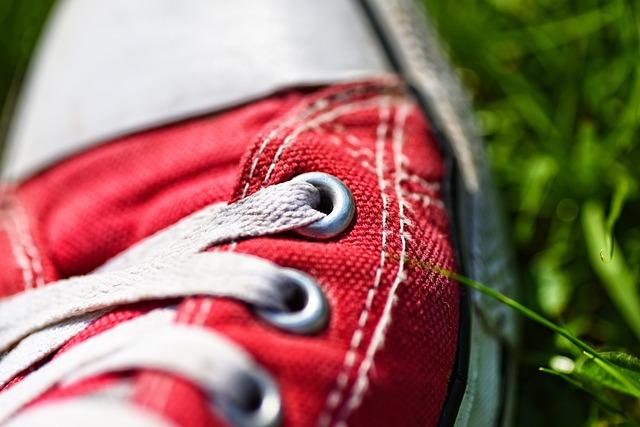 Foot, Shoe, Sneaker, Shoe Laces, Laces, Eyelet