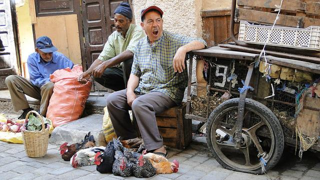 Shop, Morocco, Souk, Bazaar