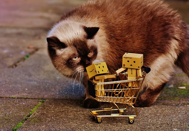 Danbo, Figures, Shopping Cart, Shopping, Cat, Curious