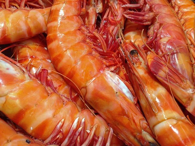 Shrimp, Seafood, Fishing, Crustaceans