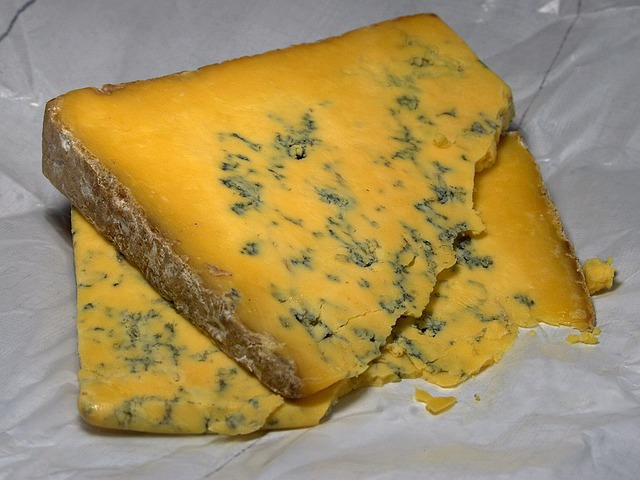 Shropshire Blue Cheese, Blue Mold, Mold, Noble Mold