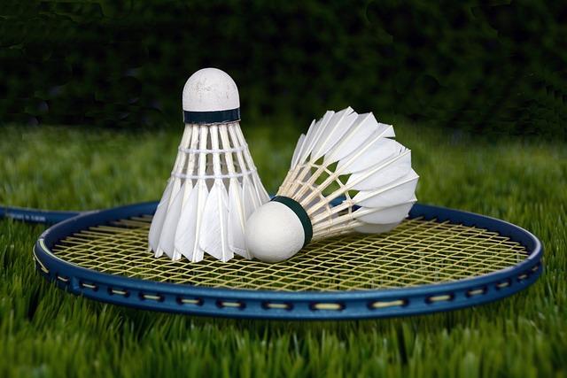 Badminton, Shuttle, Sport, Bat, Racket, Leisure