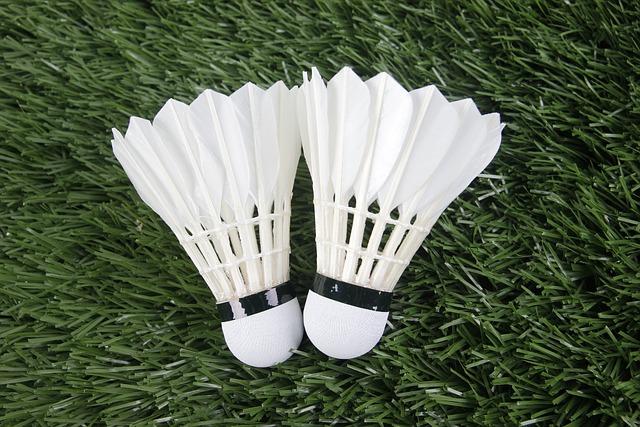 Badminton, Sport, Shuttlecock