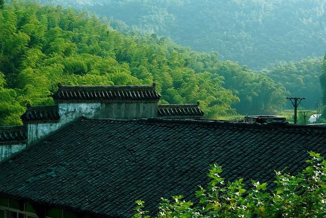 Roof, Tile, Sichuan Yibin, Bamboo, Sichuan Houses