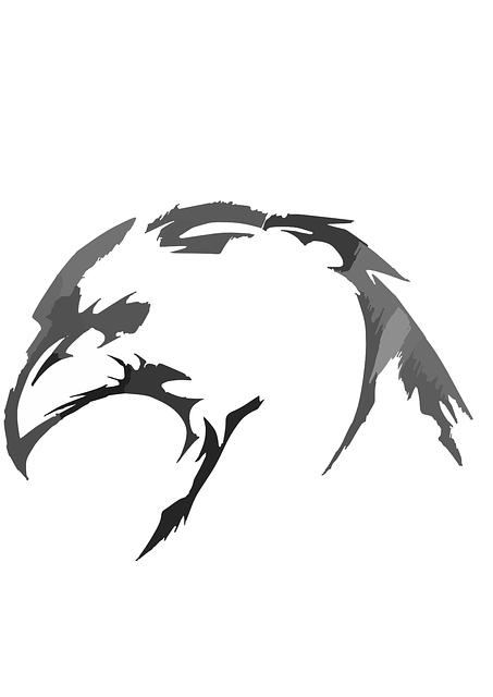 Bird, Head, Plumage, Feathers, Beak, Hawk, Side, Falcon