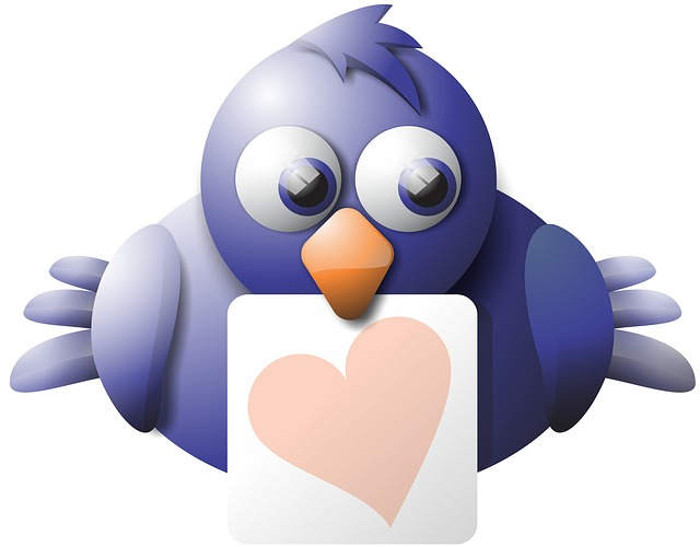 Bird, Isolated, Feathers, Sign, Perch, Card, Love