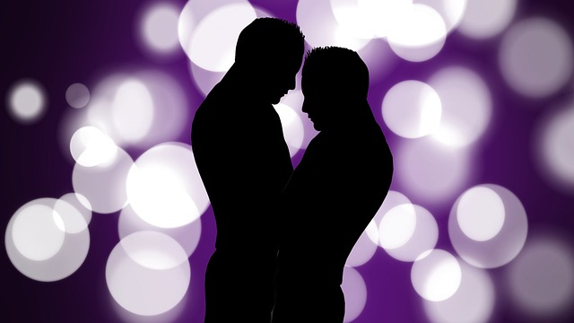 Silhouette, Men, Gay, Love, Relationship, Joy, Fun