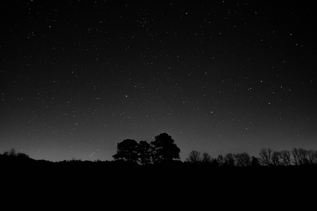 Nature, Silhouette, Night, Sky, Stars, Shooting Star