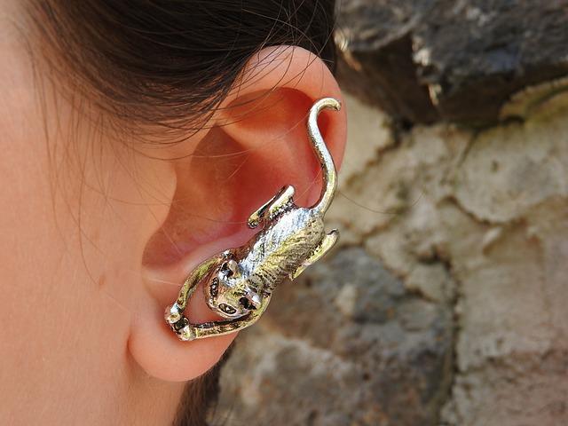 Earrings, Cat, Silver, Ear