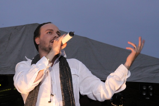 Singer, Man, Show, Stage, Song, Sing, Music