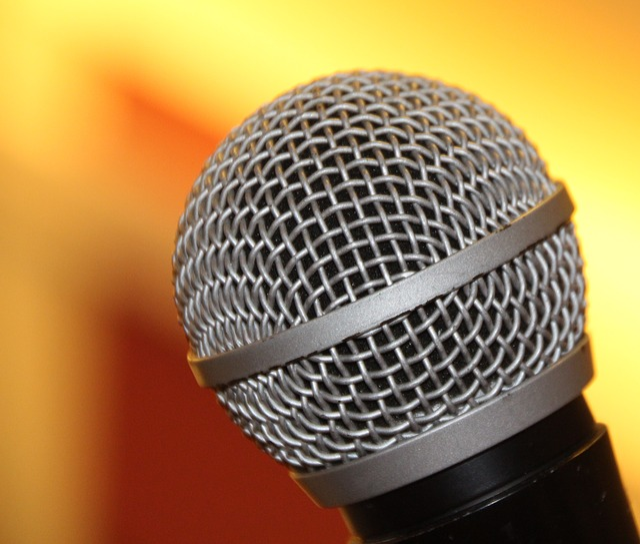 Microphone, Shure, Sing, Singing, Metal, Audio, Music