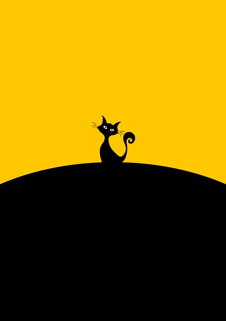 Black Cat, Sitting, Cat, Minimalist, Art, Animal
