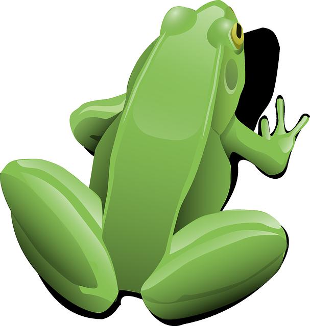 Frog, Amphibian, Aquatic, Sitting, Jumping, Toad, Pond
