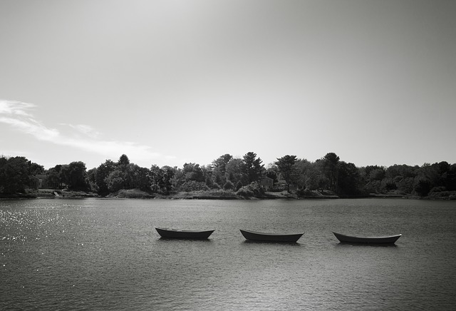 Rowboats, Boats, Skiffs, Rowing Boats, Lake, Boat, Sea