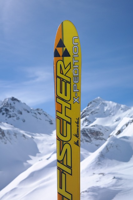 Ski, Skiing, Surreptitious Advertising, Fischer