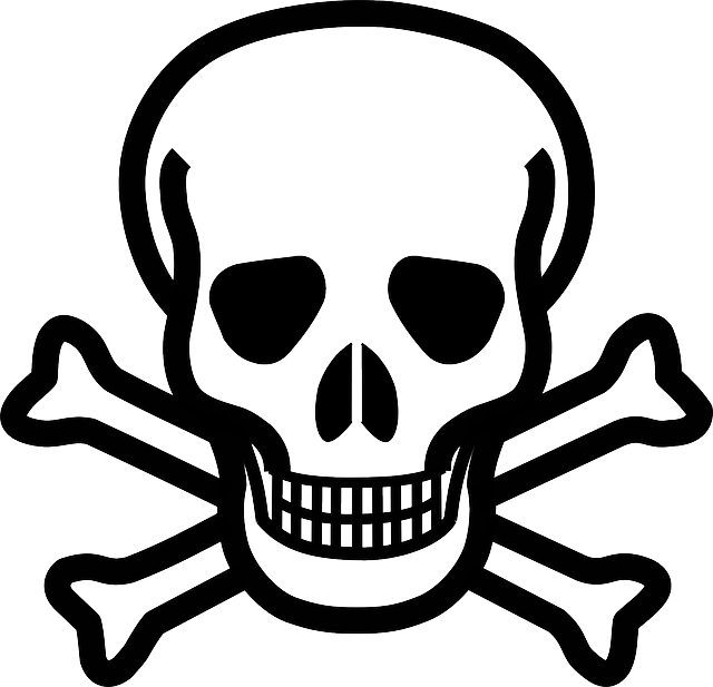 Cross, Skull, Danger, Crossbones, Bones, Death's Skull