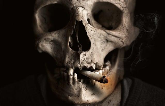 Skull And Crossbones, Skull, Bone, Smoking, Cigarette