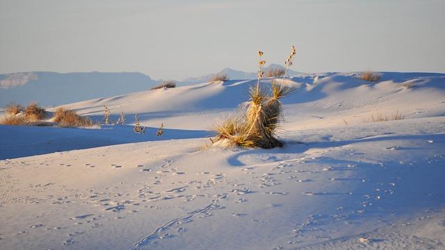 Body Of Water, Nature, Sea, Sky, Beach, Desert, Sand