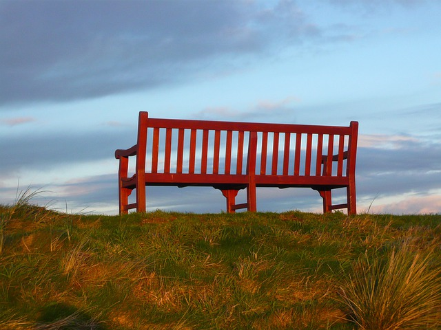 Bench, Red, Sky, Blue, Nature, Scenic, Park, Seat
