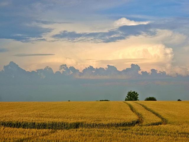 Sky, Clouds, Landscape Sunset
