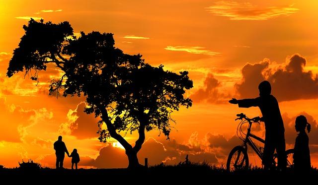 Sunset, Dawn, Silhouette, Sun, Tree, Nature, Sky