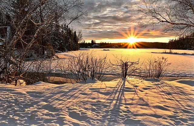 Nature, Winter, Tree, Sunset, Twilight, Evening, Sky
