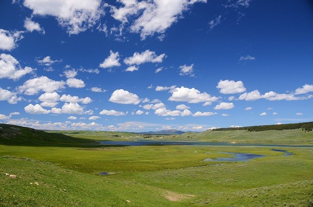 Hayden Valley, Yellowstone, Landscape, Green, Sky, Blue