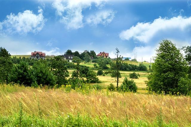 Scenery, Kielce, Sky, Tree, Green, Poland, Grass