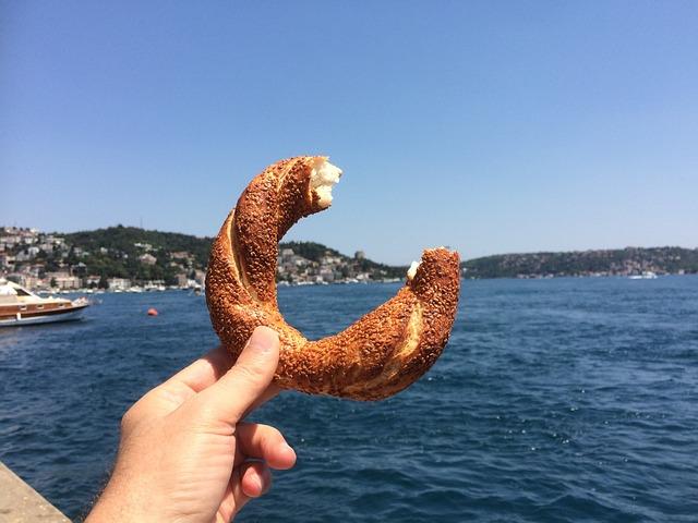 Enjoy The Istanbul Strait Wheel, Sky, Marine, Landscape