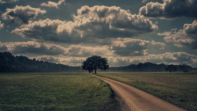 Field, Meadow, Nature, Landscape, Sky, Clouds, Idyllic