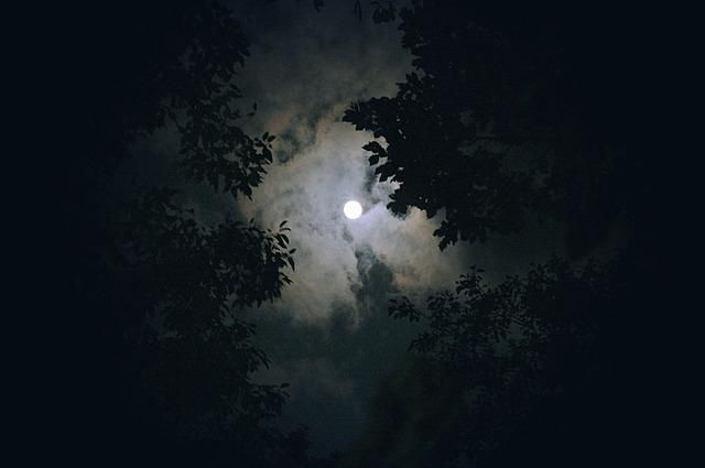 Moon, Cloud, Night View, Night, Sky, In The Evening