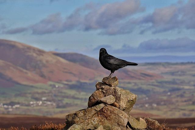 Nature, Sky, Mountain, Rock, Outdoors