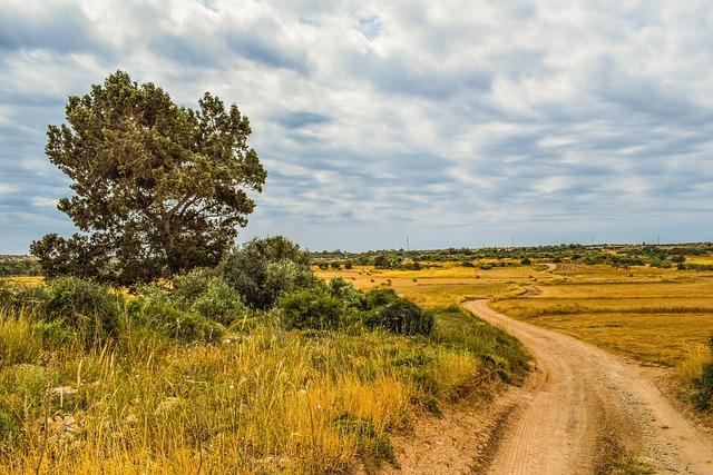 Landscape, Nature, Sky, Panoramic, Tree, Plateau
