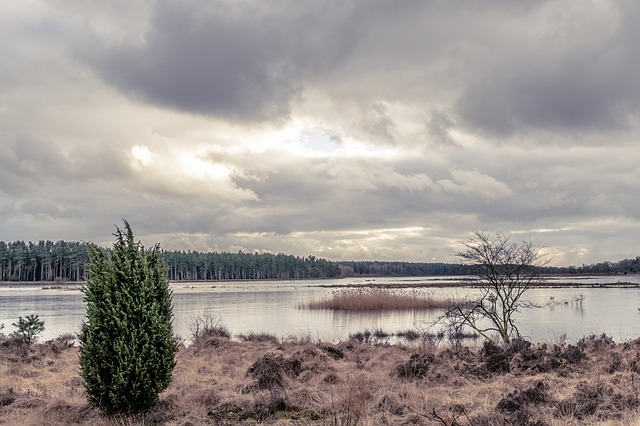 Water, River, Nature, Lake, Sky, Landscape, Outdoors