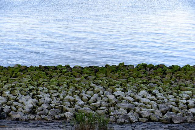 Stones, Sea, Wadden Sea, Water, Coast, Lake, Sky