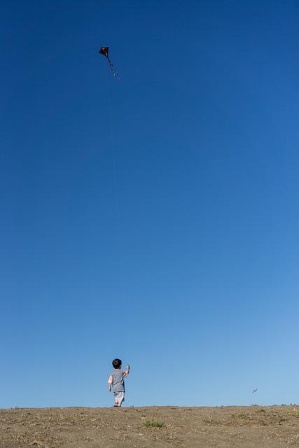 Kite, Sky, Blue, Wind, Play, Flying, Child, Summertime