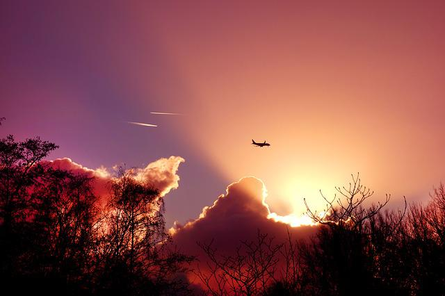 Sky, Sunset, Sunrays, Plane, Silhouette, Trees