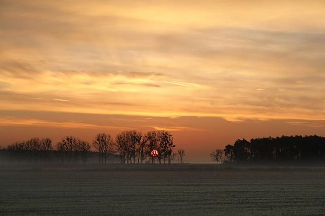 Sunrise, The Sun, Orange, Morning, Landscape, Sky