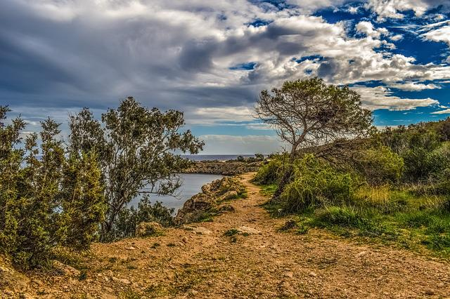 Path, Nature, Tree, Landscape, Sky, Clouds, Cloudy