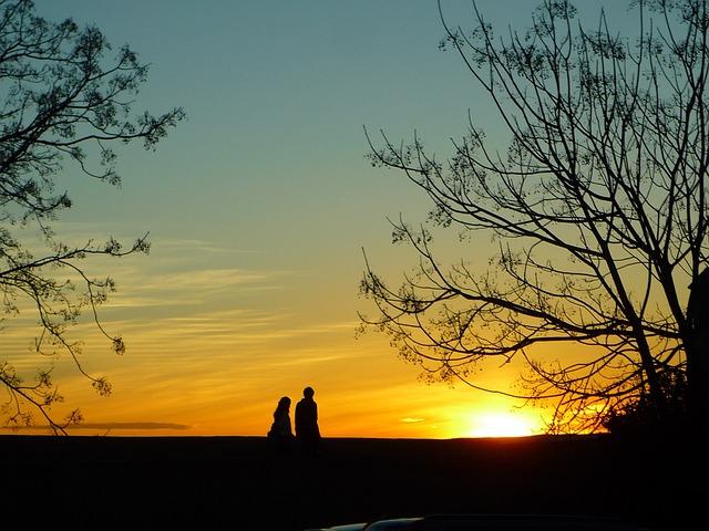 Adarve, Wall, Sunset, Trees, Sky, Light, Sun, Winter