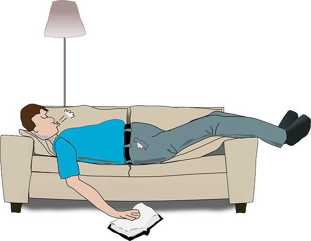 Guy, Couch, Sleeping, Man, Sofa, Book, Holding, Snoring